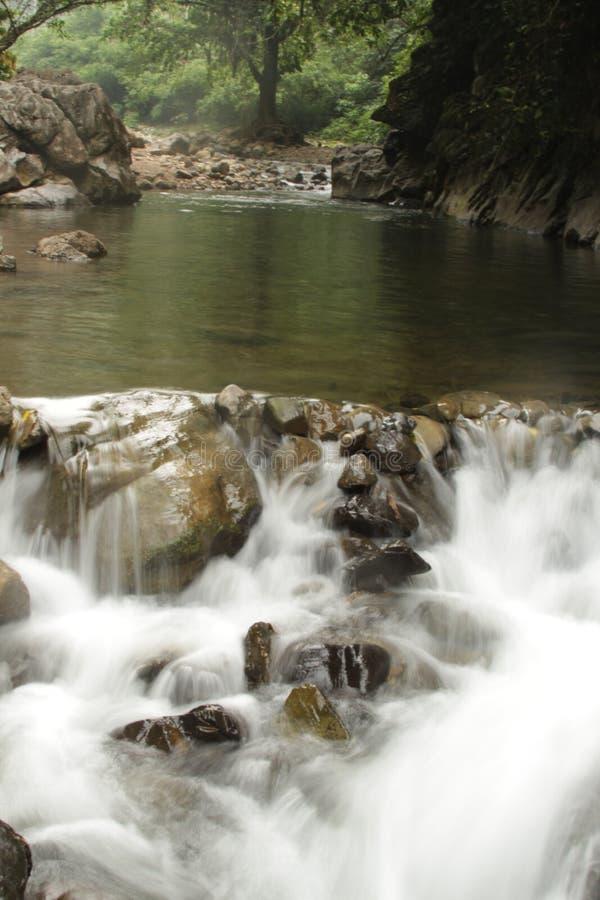 река сверкная стоковые изображения