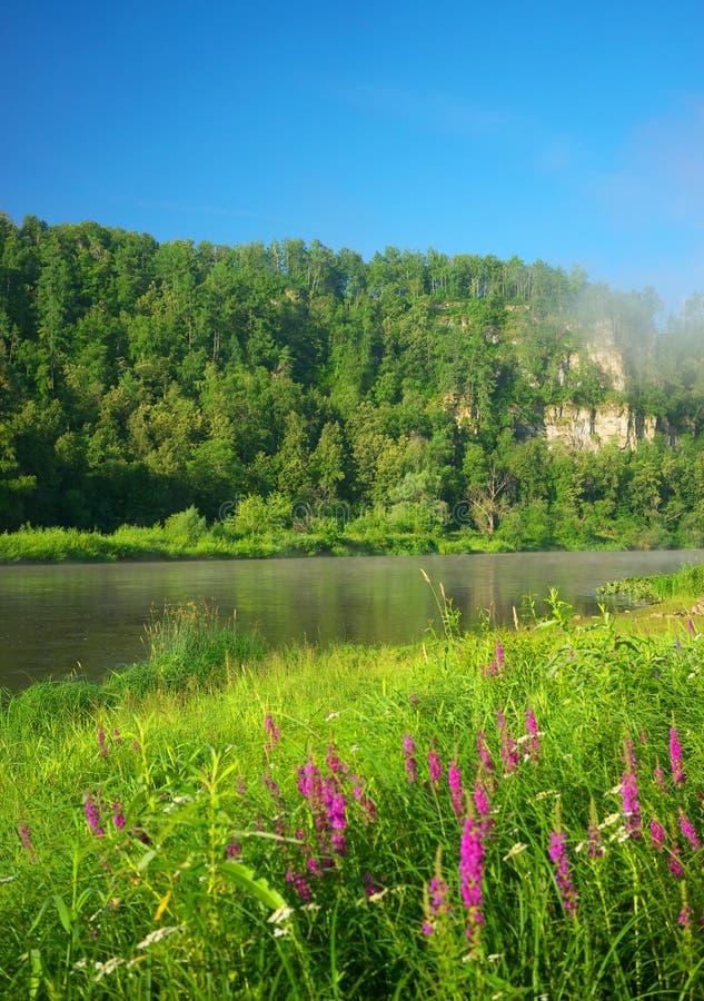 Река сена Россия, южное Ural стоковые изображения