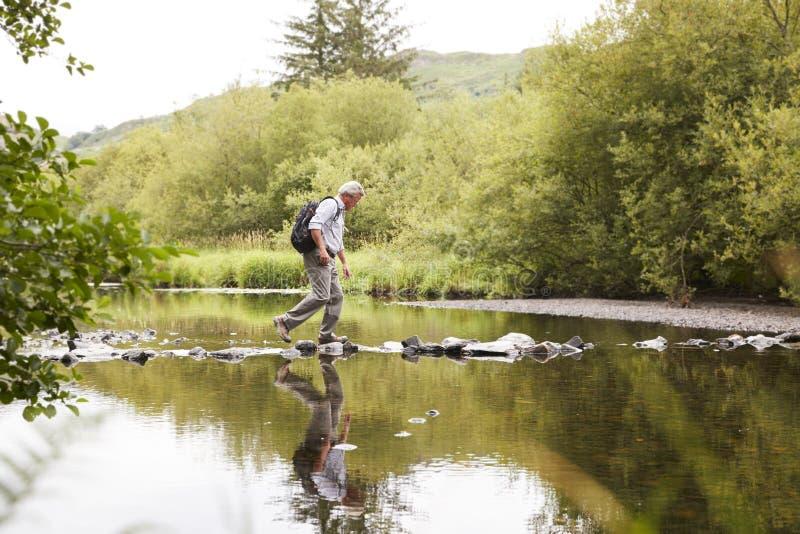 Река скрещивания старшего человека пока пеший туризм в районе озера Великобритании стоковые фотографии rf