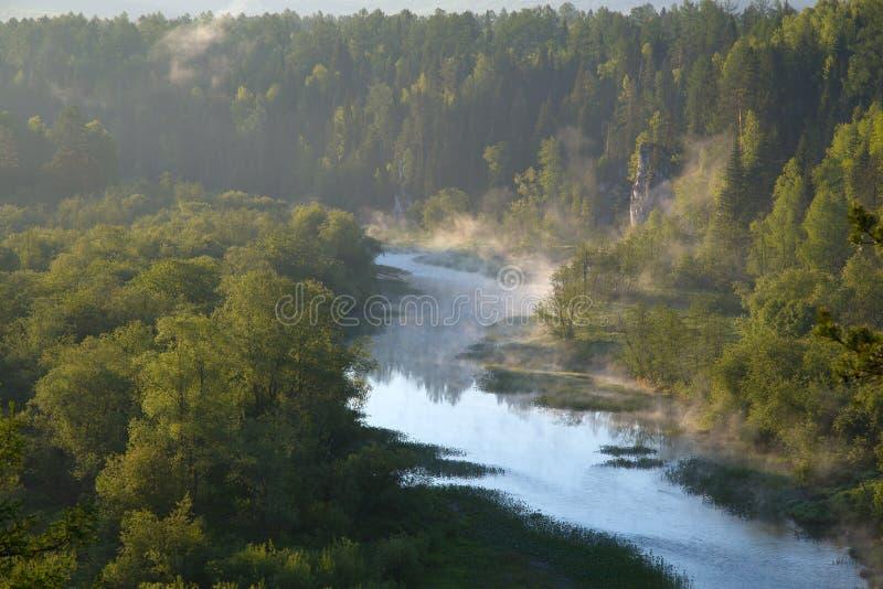 Река среди утесов стоковые изображения