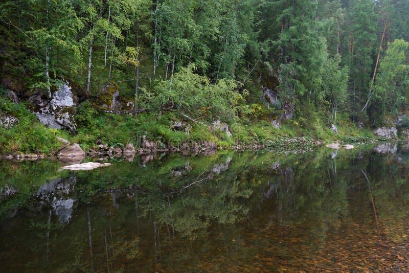 Река среди утесов стоковое фото