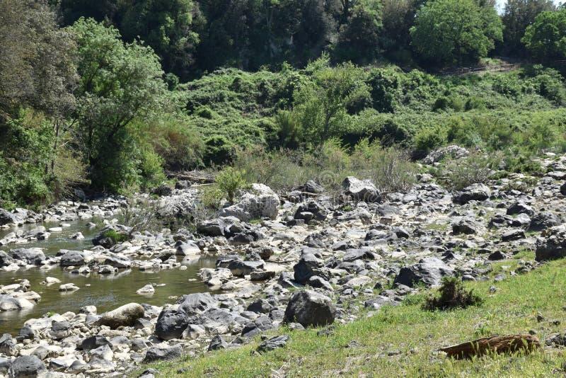 Река с банками с утесом стоковые изображения rf