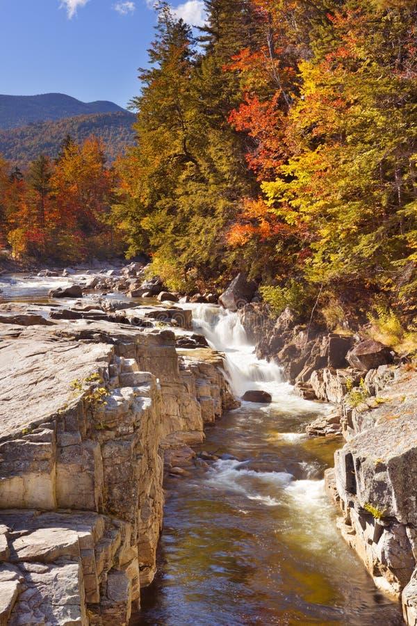 Река через листопад, скалистое ущелье, стремительное реку, NH, США стоковые фотографии rf