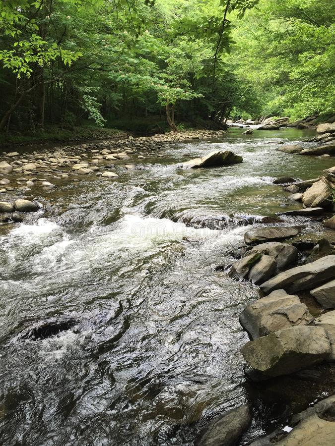 Река стоковые изображения