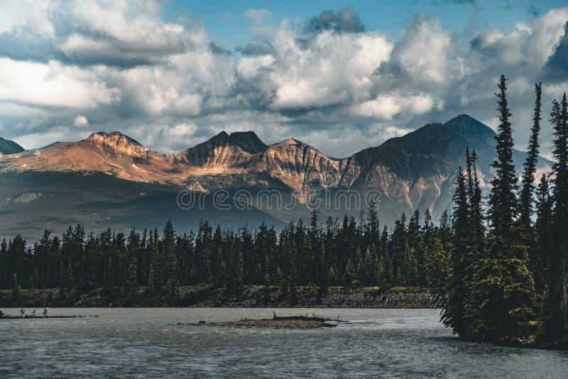 Река Athabasca пропускает канадскими скалистыми горами в Альберте, Канаде стоковое изображение rf