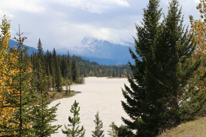 Река Athabasca стоковое изображение rf