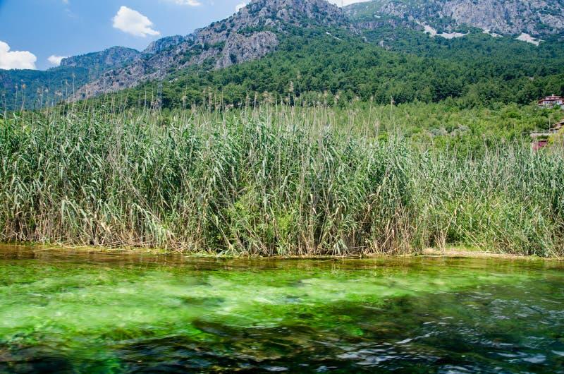 Река Azmak от Ula/Akyaka/Mugla стоковое изображение rf