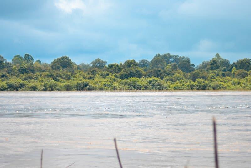 Река Barito стоковое изображение