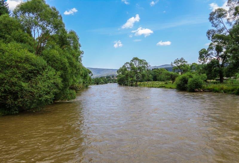 Река Bistrita стоковые фото