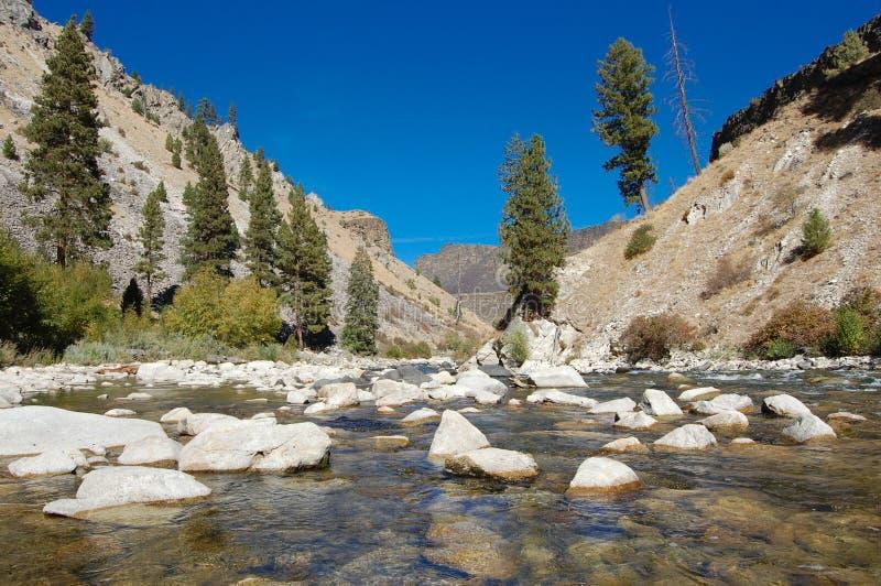 Река Boise стоковое изображение rf