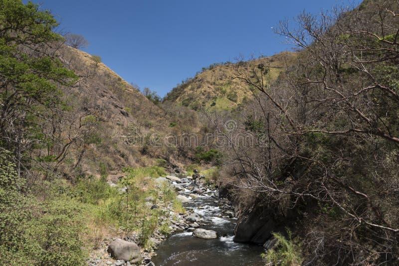 Река Candelaria Ла, горы в Коста-Рика стоковое фото