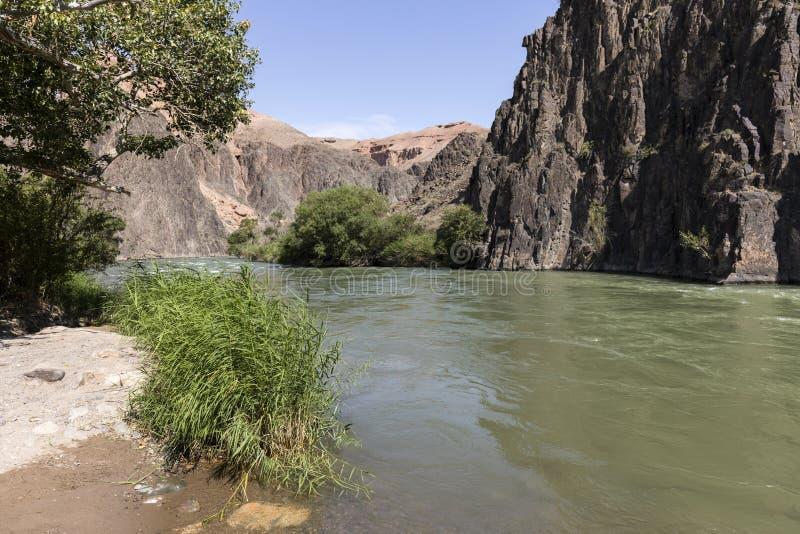 Река Charyn пропускает внутри каньон Charyn и обеспечивает плодородный берег со своей водой стоковые фото