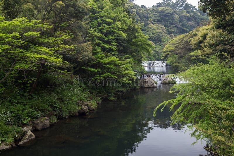 Река Cheonjiyeon и 2 малых каскада стоковые изображения