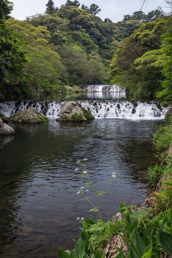 Река Cheonjiyeon и 2 малых каскада стоковая фотография