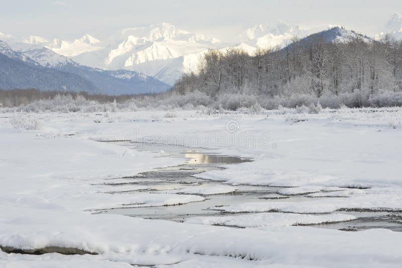 Река Chilkat. стоковая фотография rf