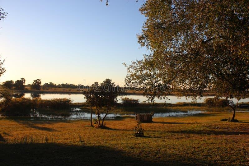 Река Chobe стоковые фото