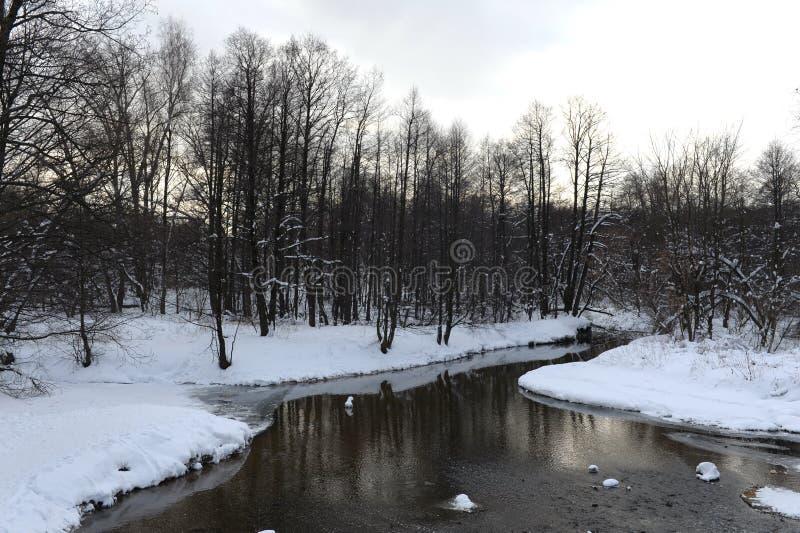 Река Churilikha в парке Kuzminki-Lyublino в Москве в зиме стоковые фото