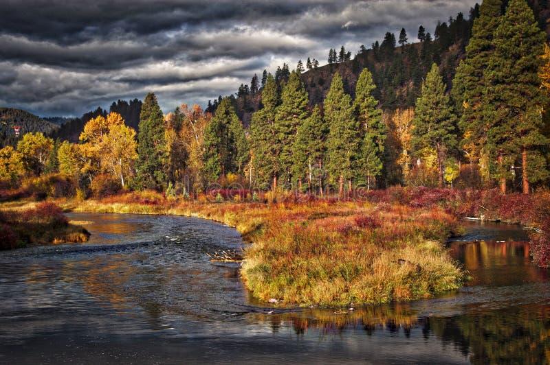 Река Clark Fork около Bearmouth, Монтаны стоковые фотографии rf