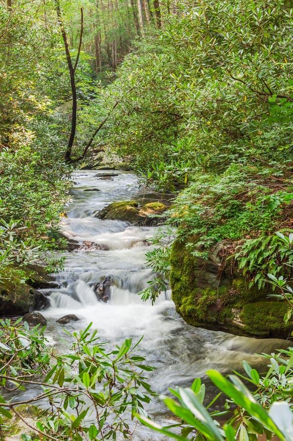 Река Coleman стоковая фотография rf