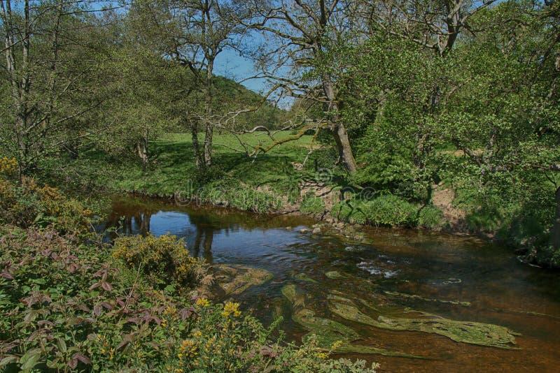 Река Derwent около зеленого цвета ключа, Scarborough, северного Йоркшира стоковые изображения