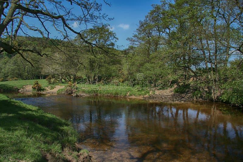 Река Derwent около зеленого цвета ключа, Scarborough, северного Йоркшира стоковое фото