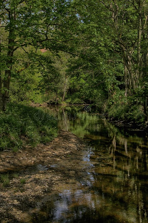 Река Derwent около зеленого цвета ключа, Scarborough, северного Йоркшира стоковая фотография