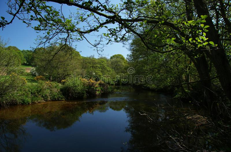 Река Derwent около зеленого цвета ключа, Scarborough, северного Йоркшира стоковое изображение rf