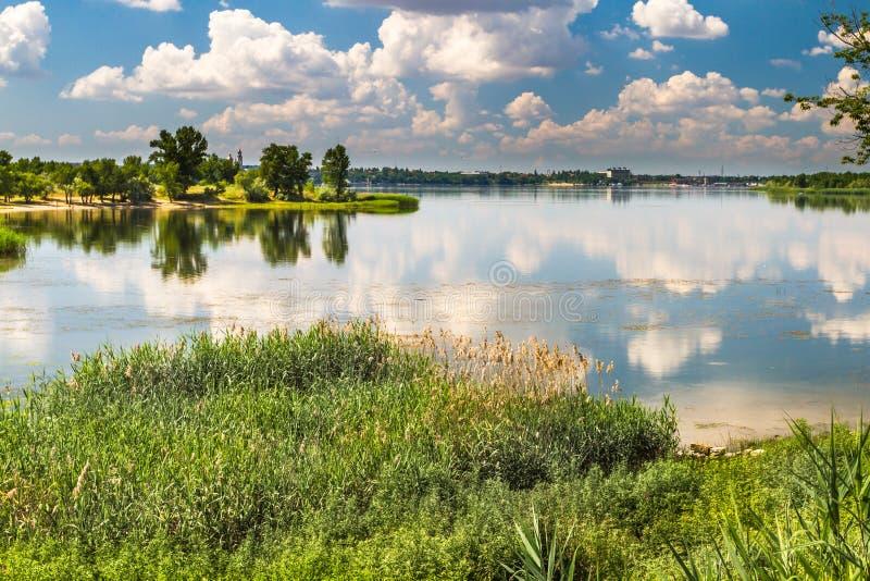 Река Dnieper, залив, тростники, осока, дома, деревья, лето стоковые фотографии rf