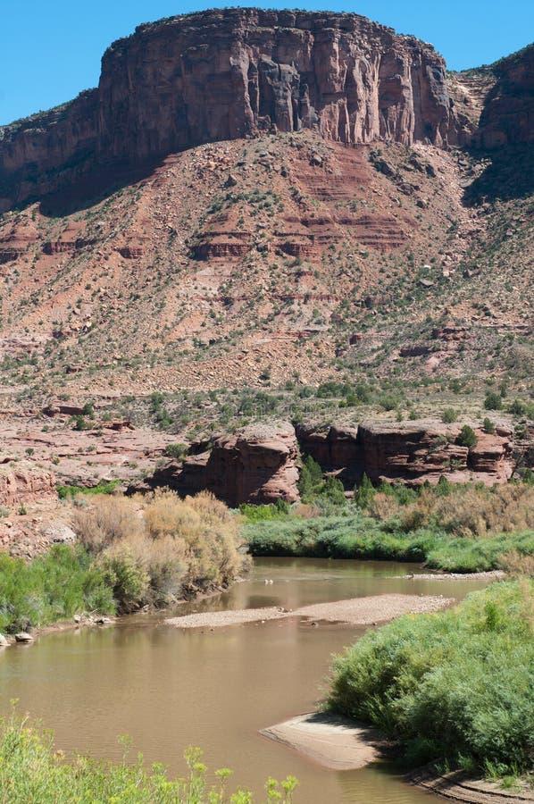 река dolores каньона стоковые фотографии rf