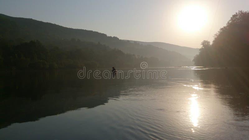 Река Drina стоковые фото