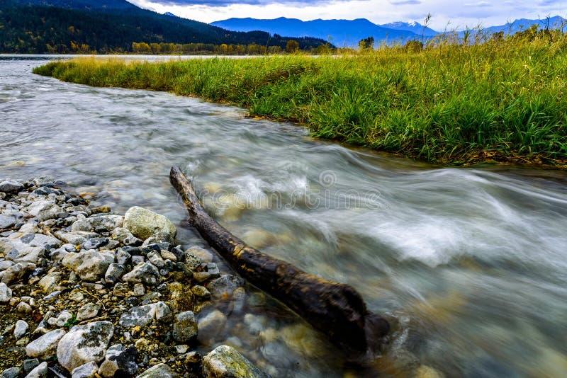 Река Fraser, долина Fraser, Британская Колумбия, Канада стоковые фотографии rf