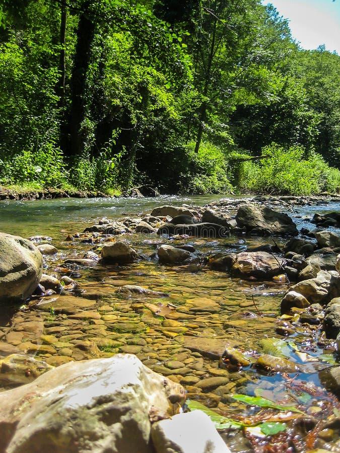 Река Gradac в Сербии стоковая фотография