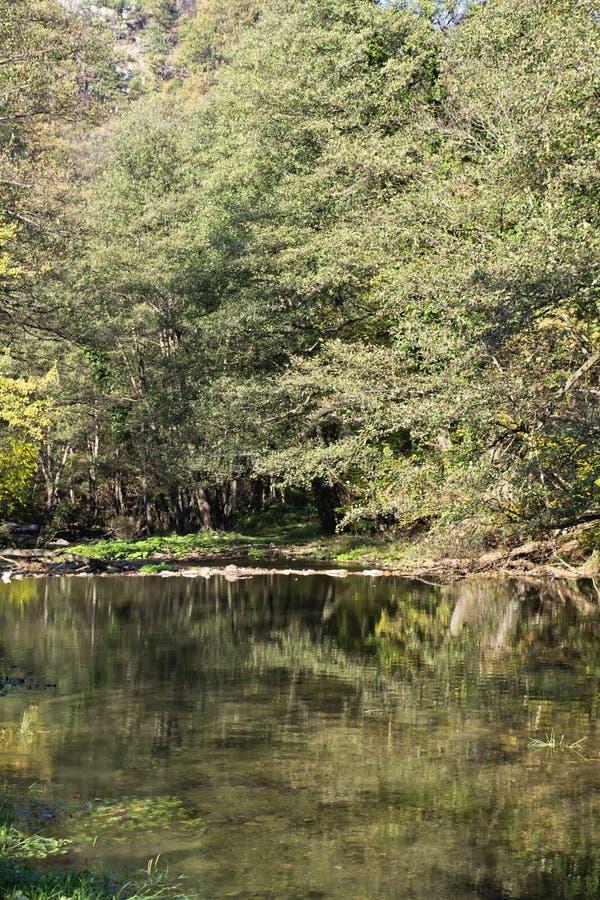Река Gradac стоковое фото