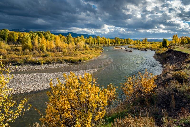 Река Gros Ventre стоковые фото