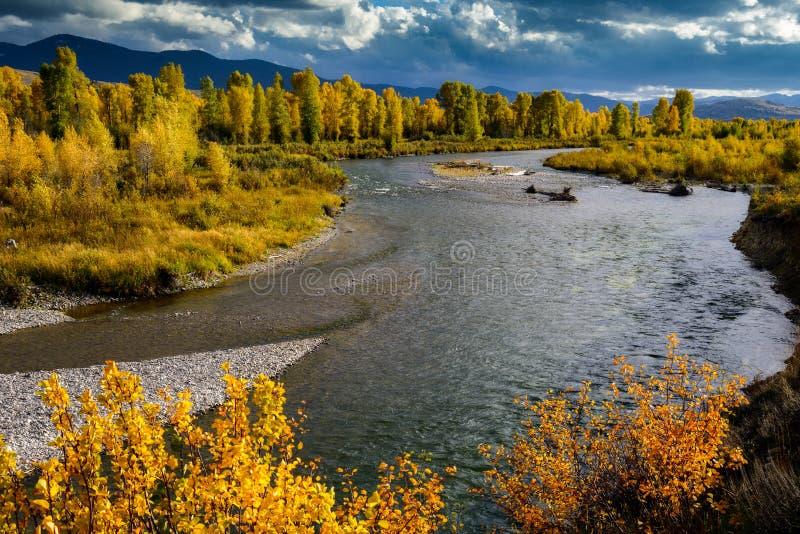 Река Gros Ventre стоковые изображения