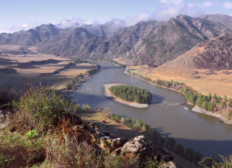 "Река Katun ""с высокими банками стоковое фото rf"