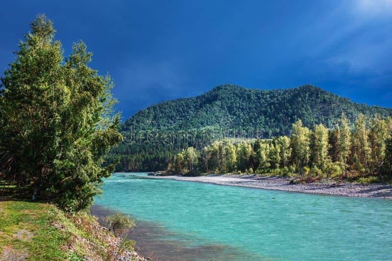река 2006 katun altai августовское Ландшафт реки Altai стоковое изображение rf