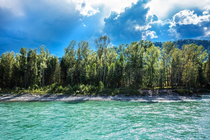 река 2006 katun altai августовское Ландшафт реки Altai стоковые фотографии rf