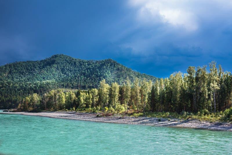 река 2006 katun altai августовское Ландшафт реки Altai стоковые фото