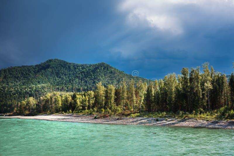 река 2006 katun altai августовское Ландшафт реки Altai стоковые изображения