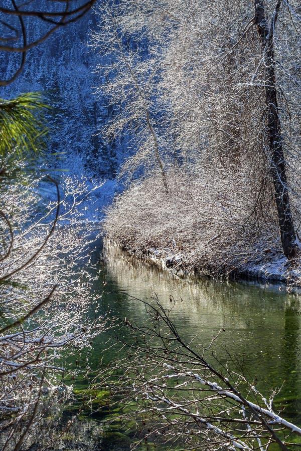 Река Leavenworth Вашингтон Wenatchee льда снега листьев зимы стоковое фото