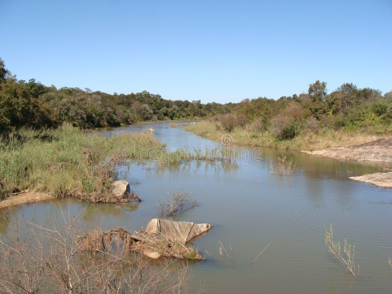 Река Levubu стоковое изображение rf