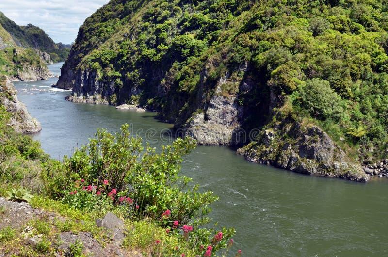 Река Manawatu - Новая Зеландия стоковая фотография