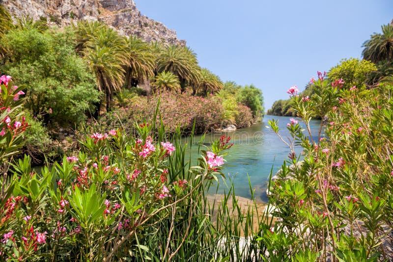 Река Megalopotamos около Preveli Palm Beach Крита Греции стоковые изображения rf
