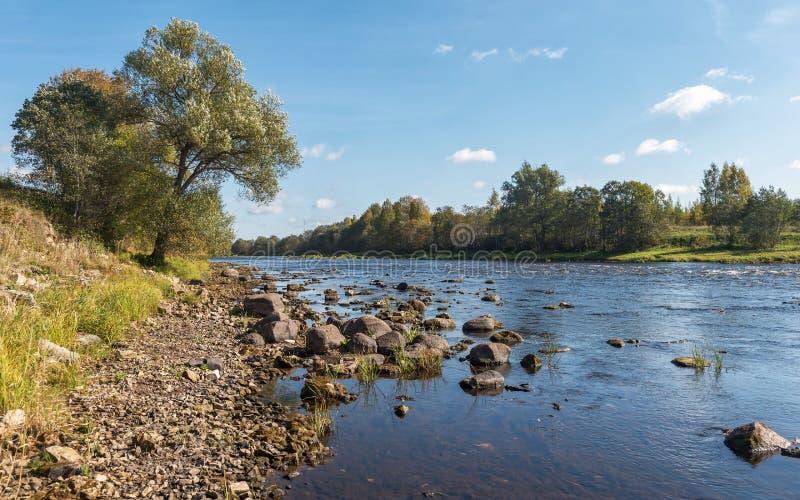 Река Msta стоковая фотография