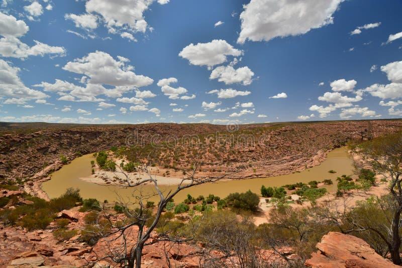 Река Murchinson Национальный парк Kalbarri Западное Австралия australites стоковая фотография rf