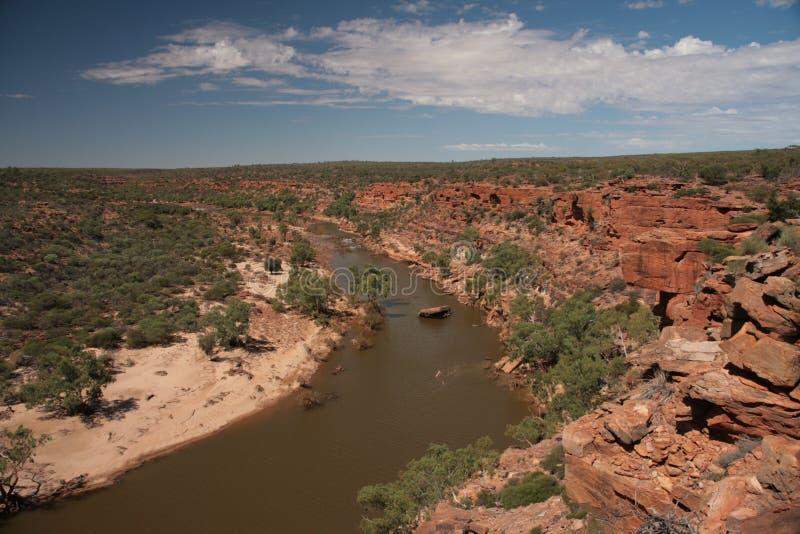 Река Murchison - Австралия стоковое изображение rf