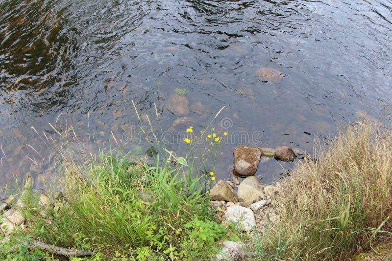 Река Otava, чехия стоковая фотография rf