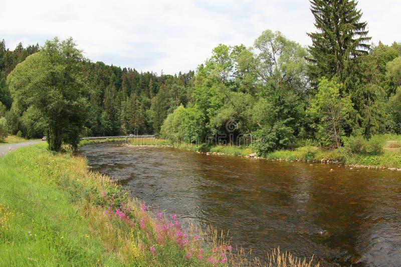 Река Otava, чехия стоковые изображения