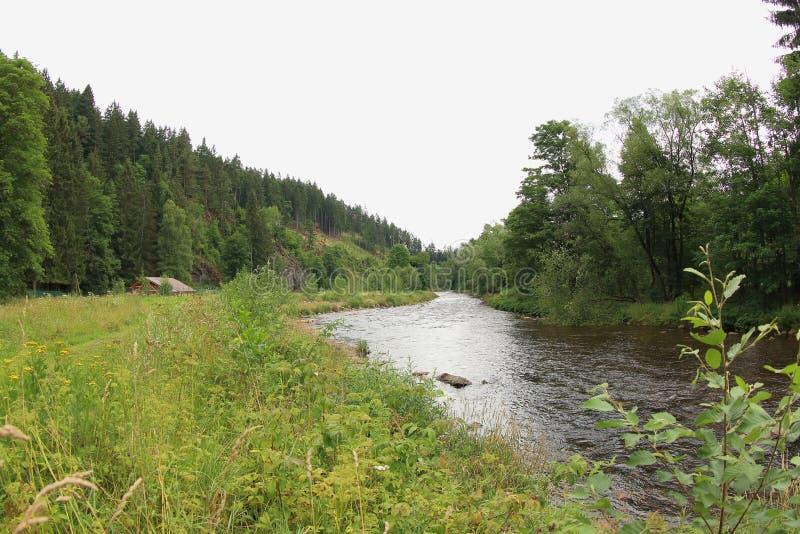 Река Otava стоковое изображение